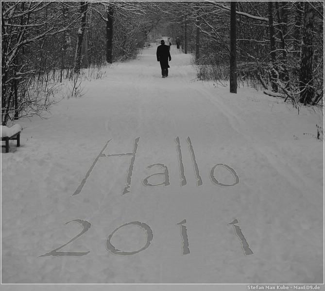 Hallo 2011