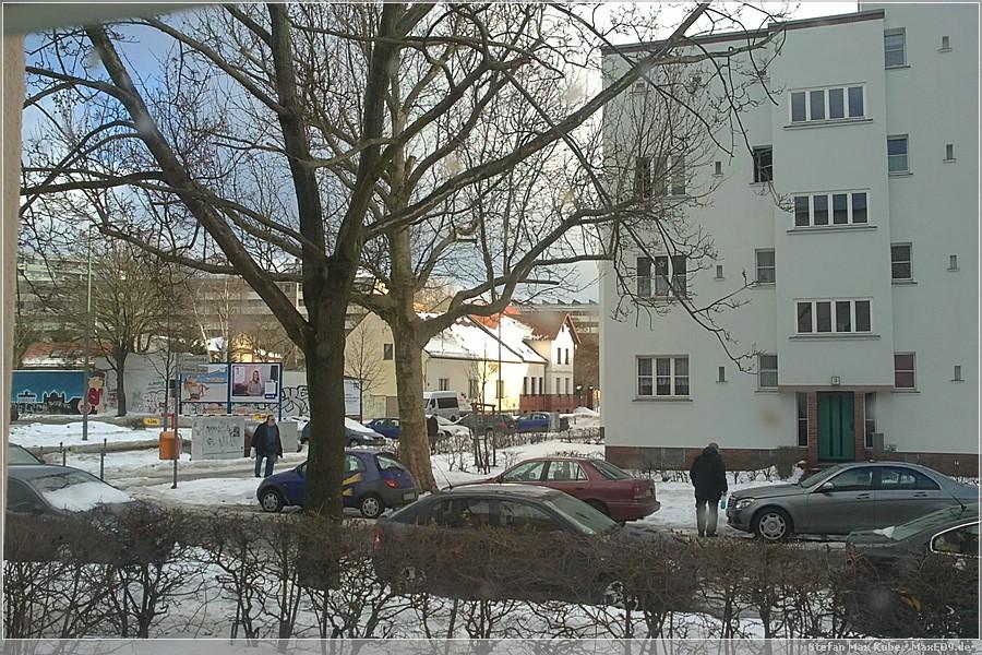 {baum} im letzten Winter