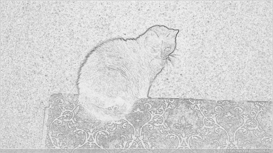 {mmx} Katze mit Bleistift-Effekt