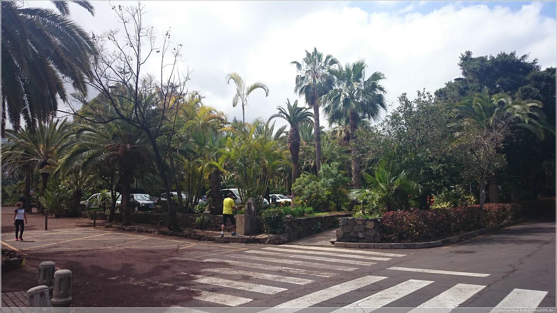 Taoro Parque