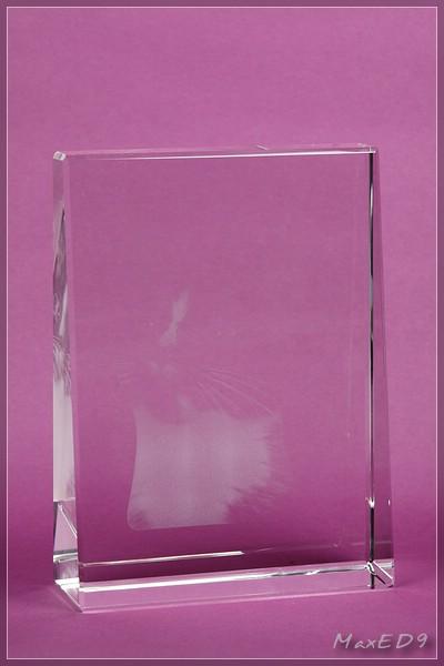 {pgf} das Glasfoto